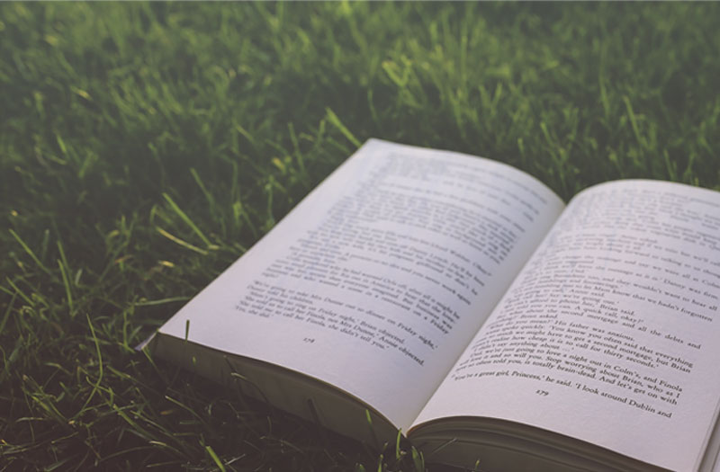 A book lying open in the grass